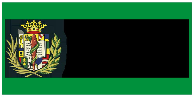 Logo Icomem
